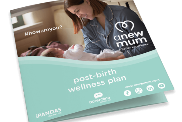 anewmum post-birth postnatal postpartum wellness plan free
